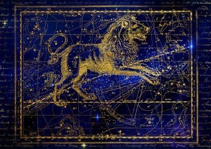 10 choses que seuls les Lion peuvent comprendre